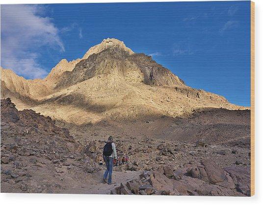 Mount Sinai Wood Print