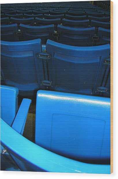 Blue Jay Seats Wood Print by Heather Weikel
