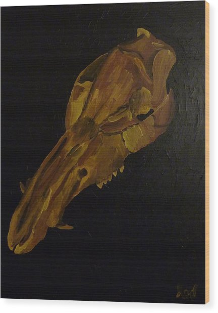 Boar's Skull No. 3 Wood Print