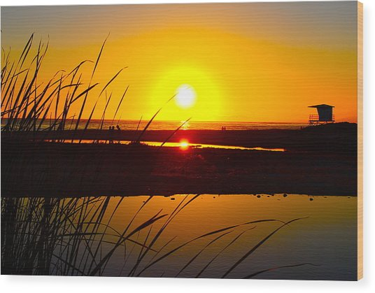 Carpinteria State Beach Wood Print by Bransen Devey