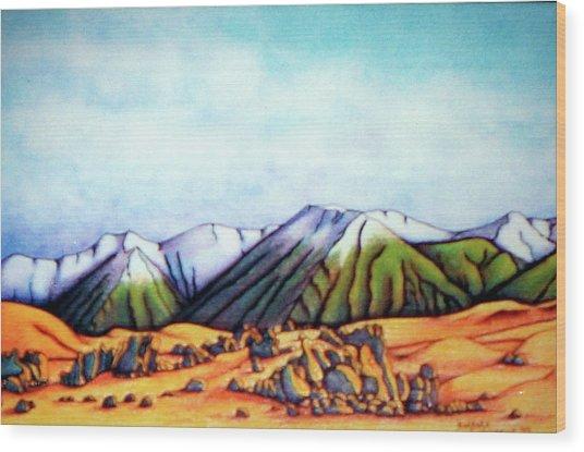Castle Hill Si Nz Wood Print by Barbara Stirrup