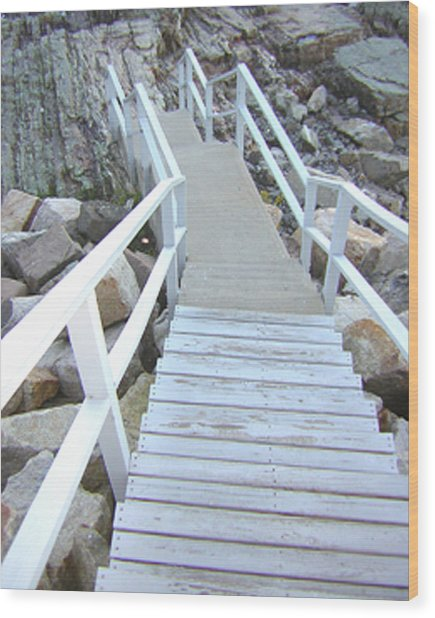 Cliff House Stairs Wood Print by Heather Weikel