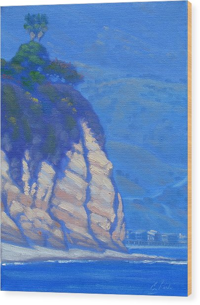 Cliffs At Point Dume Wood Print by Elena Roche