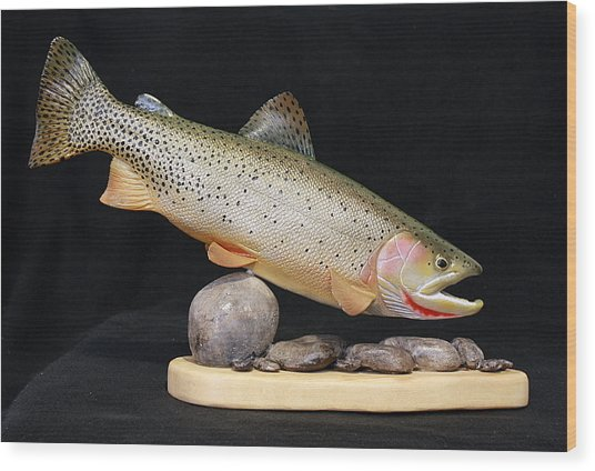 Cutthroat Trout On The Rocks Wood Print by Eric Knowlton