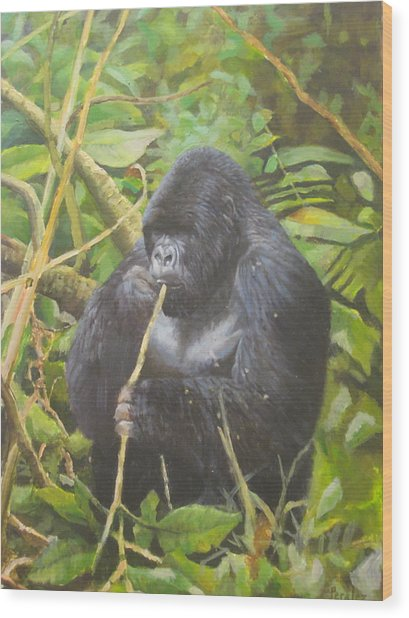 Deep In Virunga Jungle Wood Print