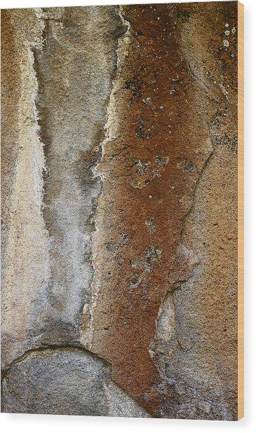 Earthworks Wood Print