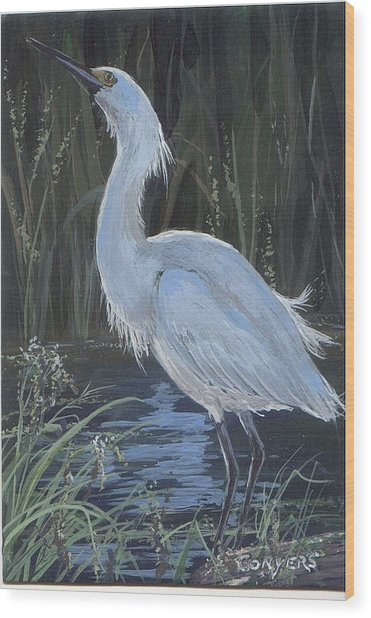 Egret Wood Print by Peggy Conyers