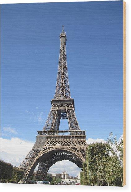 Eiffel Tower Tarped Ix Paris France Wood Print