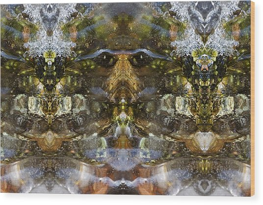Ganesh Wood Print by Shawn Young