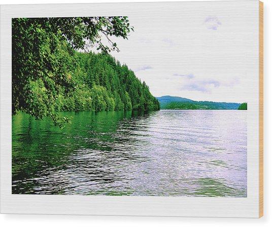Green Lake Wood Print by J D Banks