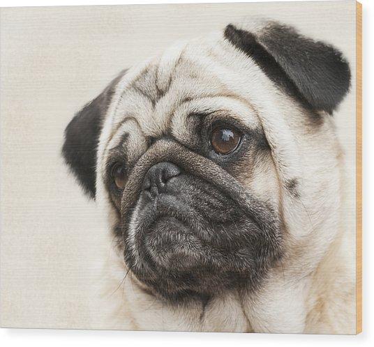 L-o-l-a Lola The Pug Wood Print