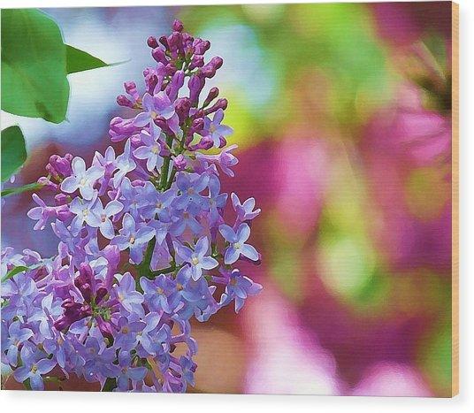 Lilacs 2012 Wood Print