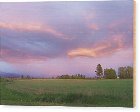 Montana Sunsets 3 Wood Print