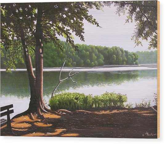 Morning At City Lake Park Wood Print by Larry Hoskins