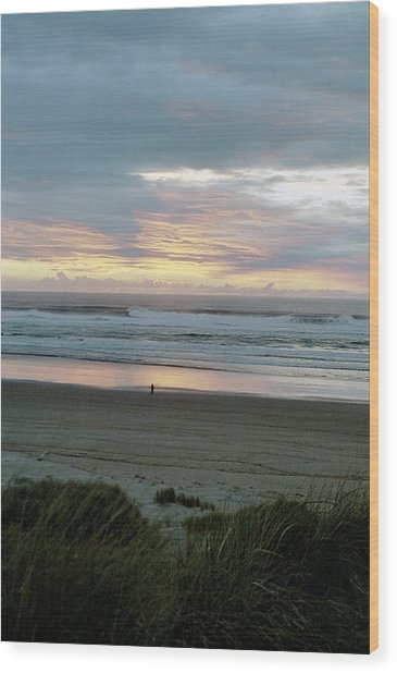Oregon Coast 1 Wood Print