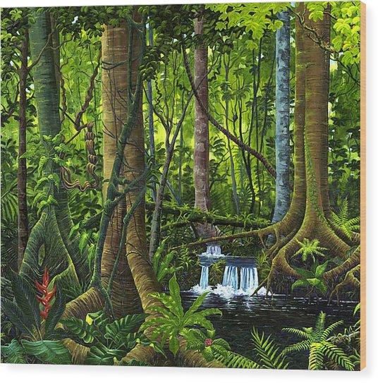 Osa Peninsula Rainforest Wood Print