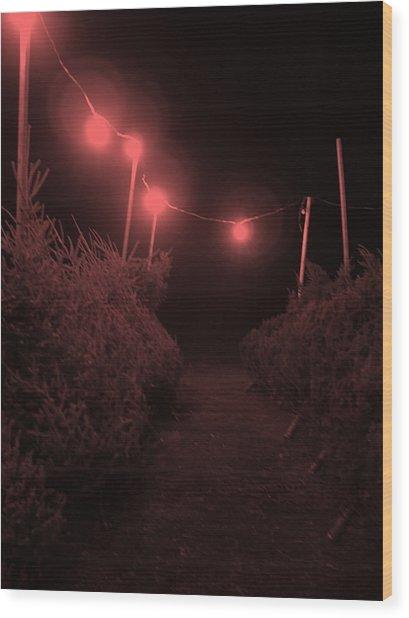 Red Night Wood Print by John  Bichler