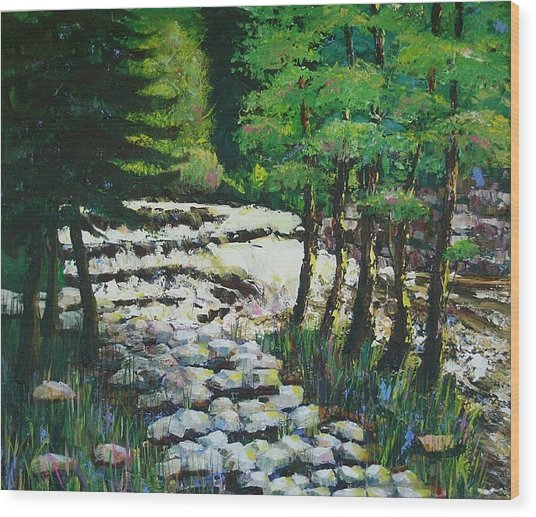 Sunlit Waterfall Wood Print by Art Nomad Sandra  Hansen