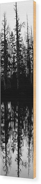 Yellowstone Panel 2 Wood Print by Rachel Barner