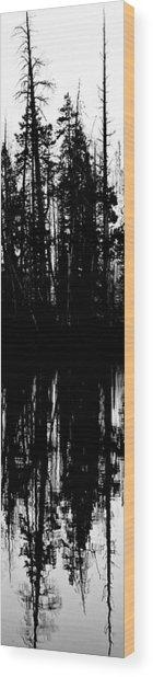 Yellowstone Panel 3 Wood Print by Rachel Barner