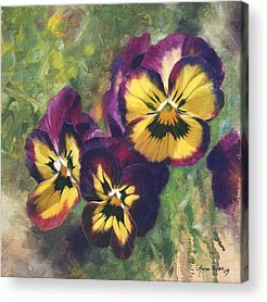 Pansy Paintings Acrylic Prints