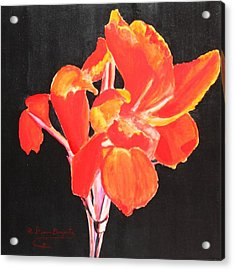 Acrylic Print featuring the painting Red Canna by M Diane Bonaparte