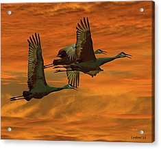Cranes At Sunrise Acrylic Print by Larry Linton