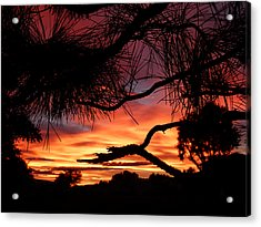 A Wishbone Sunset Acrylic Print