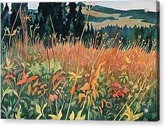 Alpine Autumn Acrylic Print