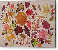 Autumn Leaves Acrylic Print by Diane Frick