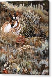 Acrylic Print featuring the painting Autumn Splendor by Sheri Gordon