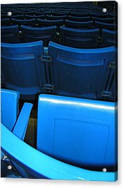 Blue Jay Seats Acrylic Print by Heather Weikel