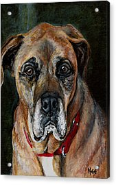 Boo For Dogtown Acrylic Print by Mary-Lee Sanders