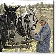 Bound By Trust Acrylic Print by Ron  McGinnis
