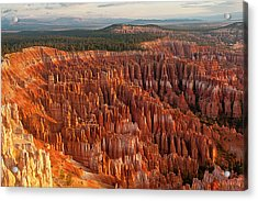 Bryce Canyon Acrylic Print by Phil