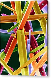 Caffeine Crystals, Sem Acrylic Print by Dr Jeremy Burgess