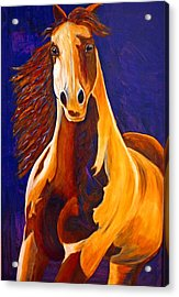 Acrylic Print featuring the painting Contemporary Horse Painting Painted Sensation by Jennifer Godshalk