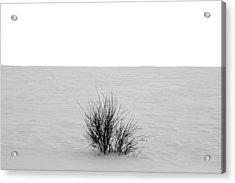 Deep Breath Acrylic Print by Jerry Cordeiro