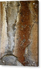 Earthworks Acrylic Print by The Forests Edge Photography - Diane Sandoval