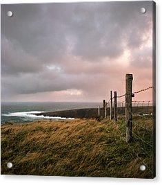 Fence In Ireland Acrylic Print by Danielle D. Hughson