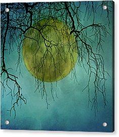Full Moon Acrylic Print by Jill Ferry