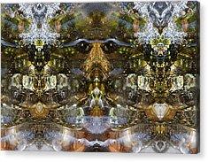 Ganesh Acrylic Print by Shawn Young