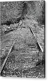 Acrylic Print featuring the photograph Ghost Rail by Juls Adams