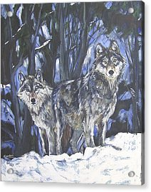 Acrylic Print featuring the painting Grey Wolves by Debora Cardaci