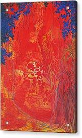 I See Through It All Acrylic Print by M J Venrick