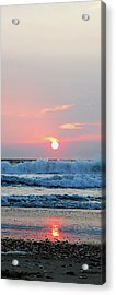 Just The Beginning Acrylic Print by Linda Mesibov
