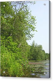 Lake Of Isles Acrylic Print by Heather Weikel