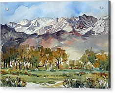 Acrylic Print featuring the painting Linda's View by Pat Crowther
