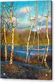 March. Birches Acrylic Print