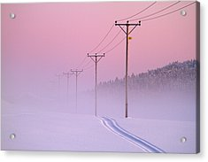Old Powerlines Acrylic Print
